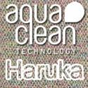Visual Haruka
